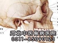 人体骨骼之颅骨概述