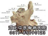 上颌骨骨髓炎患者康复出院
